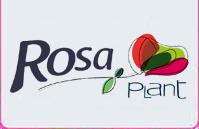 RosaPlant