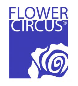 Salmon flower circus