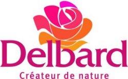 Roze delbarda