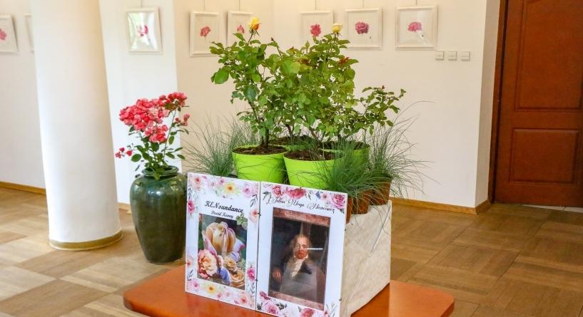Róża julian Ursyn niemcewicz
